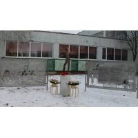 Фигура в г. Тольятти (Россия 2020)