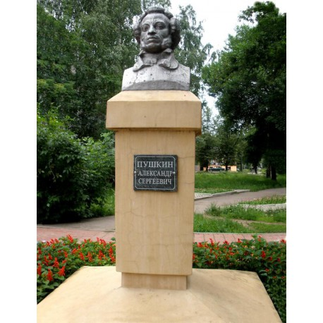 Bust in Боровичи (Russia, 2003)