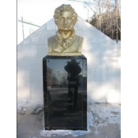 Bust in Возжаевка (Russia, ?)