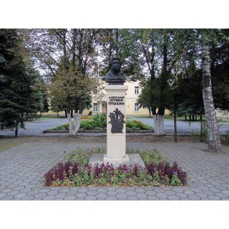 Бюст в г.Гомель (Беларусь, ?)