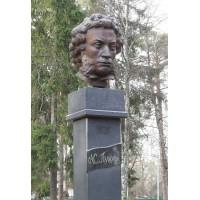 Bust in Жаворонки (Russia, 2011)