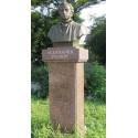 Bust in Комрат (Молдова, 2009)