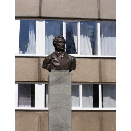 Bust in Красноград (Ukraine, 1983)