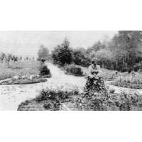 Бюст в деревне Лаптево (Россия, 1901-?)