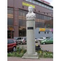 Bust in Люберцы (Russia, ?)