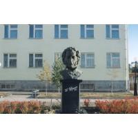 Bust in Моздок (Russia, 2008)