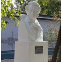 Bust in Новосибирск (Russia, 1950-е)