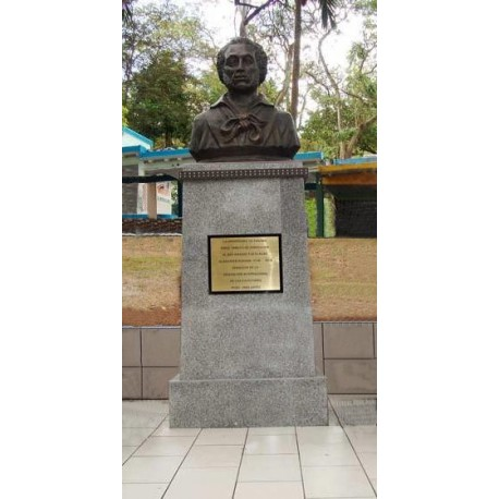 Bust in Панама (Панама, 2009)