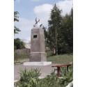 Bust in Полонное (Ukraine, 1969)