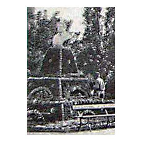 Бюст в г.Саратов (Россия, 1899)