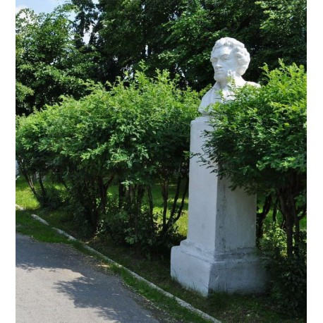 Bust in Невьянск (Russia, ?)