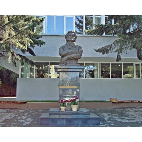 Bust in Усть-Каменогорск (Казахстан, 2009)