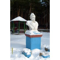 Bust in Чернолучье (Russia, ?)
