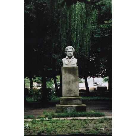 Бюст в г.Каменка- Бугская (Украина, 1949)