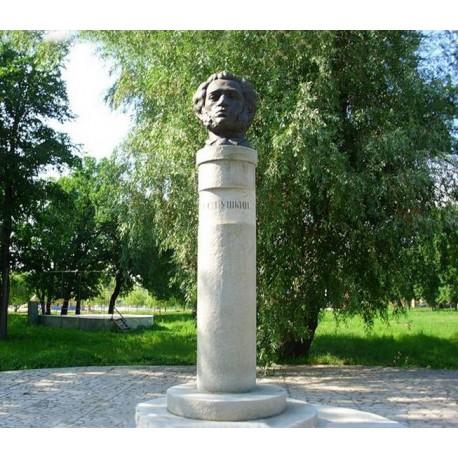 Bust in Новокуйбышевск (Russia, ?)