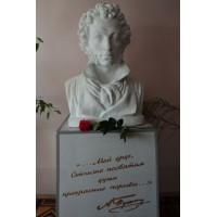 Bust in Михайлов (Russia, ?)