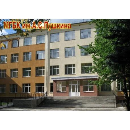 Государственный библиотечный колледж имени А.С.Пушкина, г.Могилёв (Беларусь)