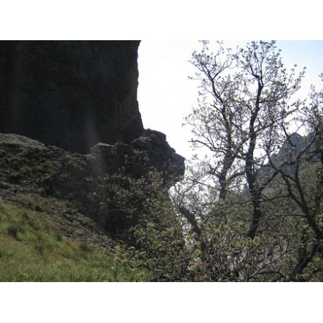 Профиль Пушкина на горе Коктебель, Крым (Россия)