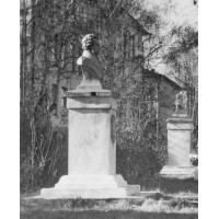Bust in  Кинешма (Russia,?0