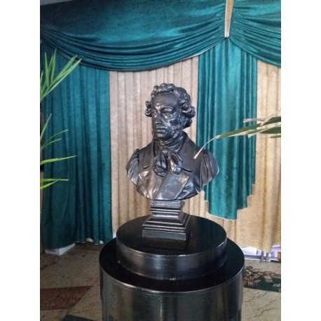Bust in Набережные Челны (Russia, ?)