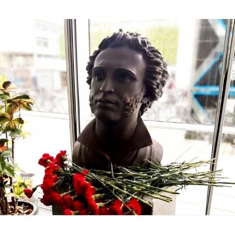 Monument to Pushkin Copenhagen, Denmark 2017