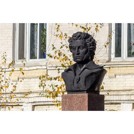 Bust in Минеральные Воды (Russia, ?)